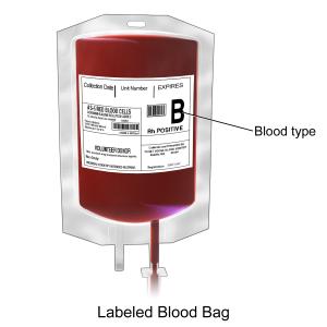 Dieta podle krevních skupin